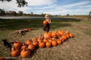 elliot-farms-pumpkin-patch-10